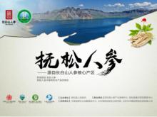 """2018中国农业(博鳌)论坛开幕,""""抚松人参""""品牌推介取得丰硕成果"""